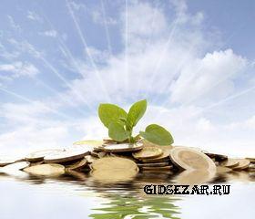 Инвестиции в сайты, стоит ли вкладывать деньги в покупку сайтов