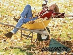 Садовые работы осенью